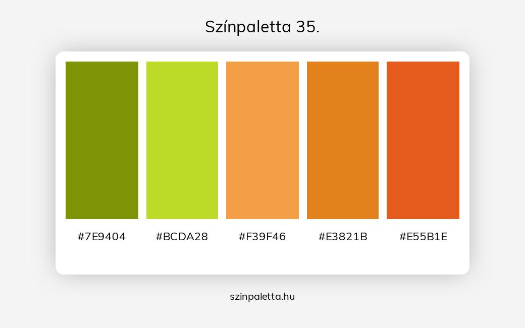 Színpaletta 35. - szinpaletta.hu